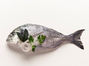 Nikon School_Workshop Food Photography_ (c) Renato Marcialis