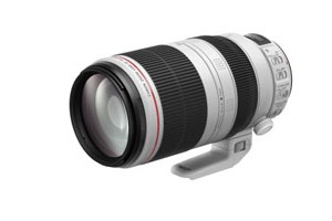 EF 100-400mm f4.5-5.6L IS II USM_tcm80-1210599