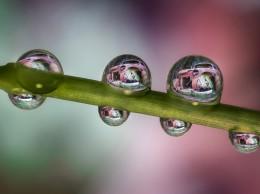 Nikon_La bellezza della Ruggine_40mm_Water Droplets_(c)Alberto Ghizzi Panizza